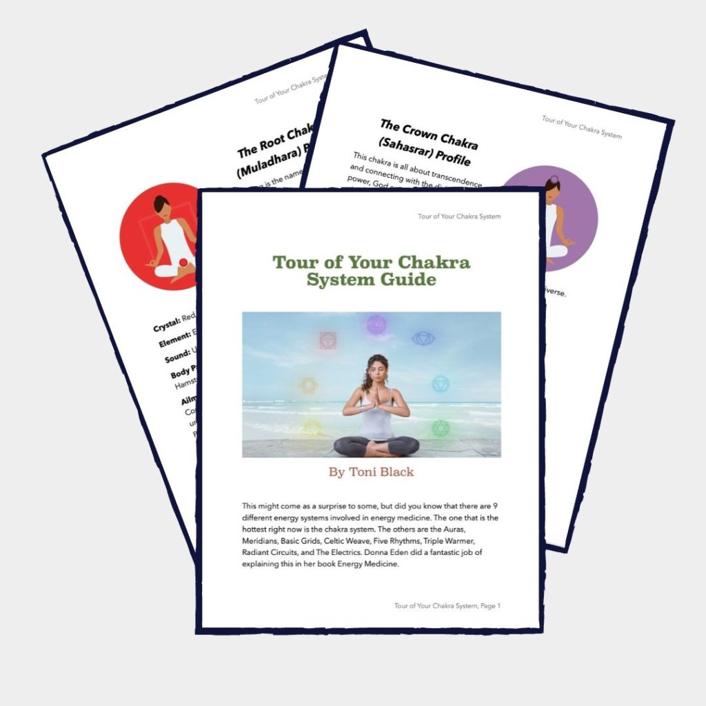 Tour of the Chakras Guide